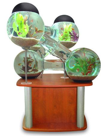 aquario-futurista